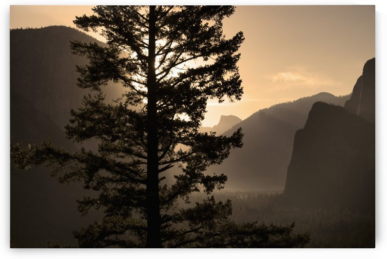 Sunrise over Half Dome at Tunnel View, Yosemite National Park; California, United States of America by PacificStock