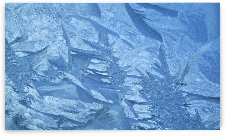 Ice patterns formed on glass after a hard frost; Nelson, Wakefield, New Zealand by PacificStock