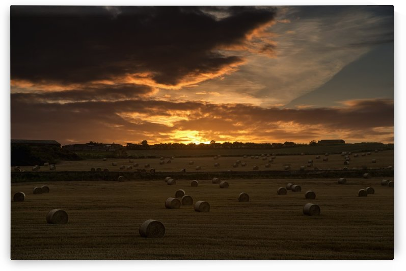 Dramatic sunset with dark clouds over a field with hay bales; Whitburn, Tyne and Wear, England by PacificStock