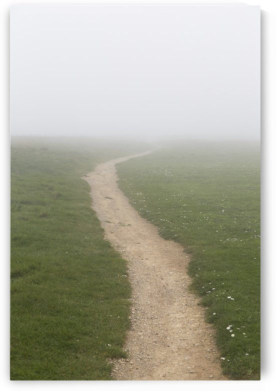 A dirt path in the fog; South Shields, Tyne and Wear, England by PacificStock