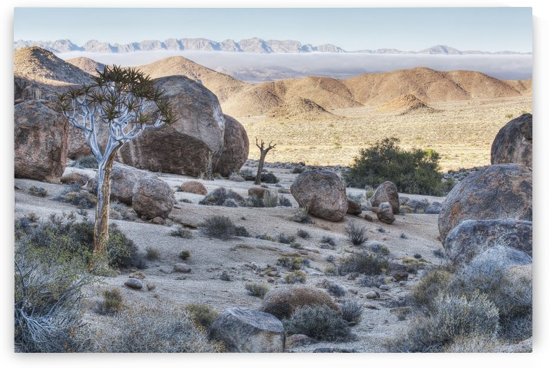 Richtersveld National Park; South Africa by PacificStock