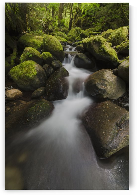 Ruckel Creek; Oregon, United States of America by PacificStock