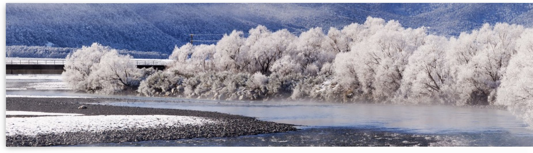 Hoar frost on trees by a river; Arthurs Pass, New Zealand by PacificStock