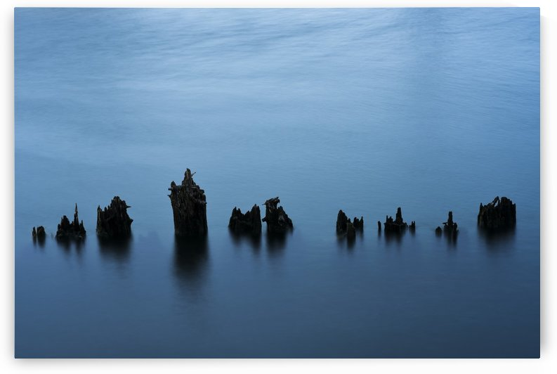 Water moves around old pilings on the Astoria riverfront; Astoria, Oregon, United States of America by PacificStock