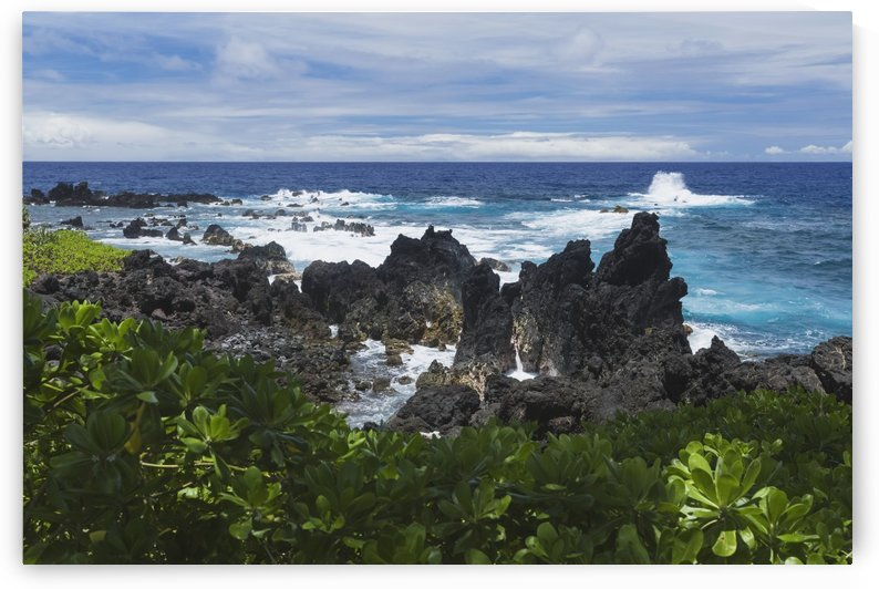 Surf at lava rock shore in Laupahoehoe Point County Park on Hamakua Coast; Island of Hawaii, Hawaii, United States of America by PacificStock