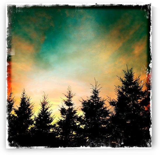 Skyburn by Ulf Bley