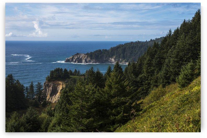 Cape Falcon extends into the Pacific Ocean; Manzanita, Oregon, United States of America by PacificStock