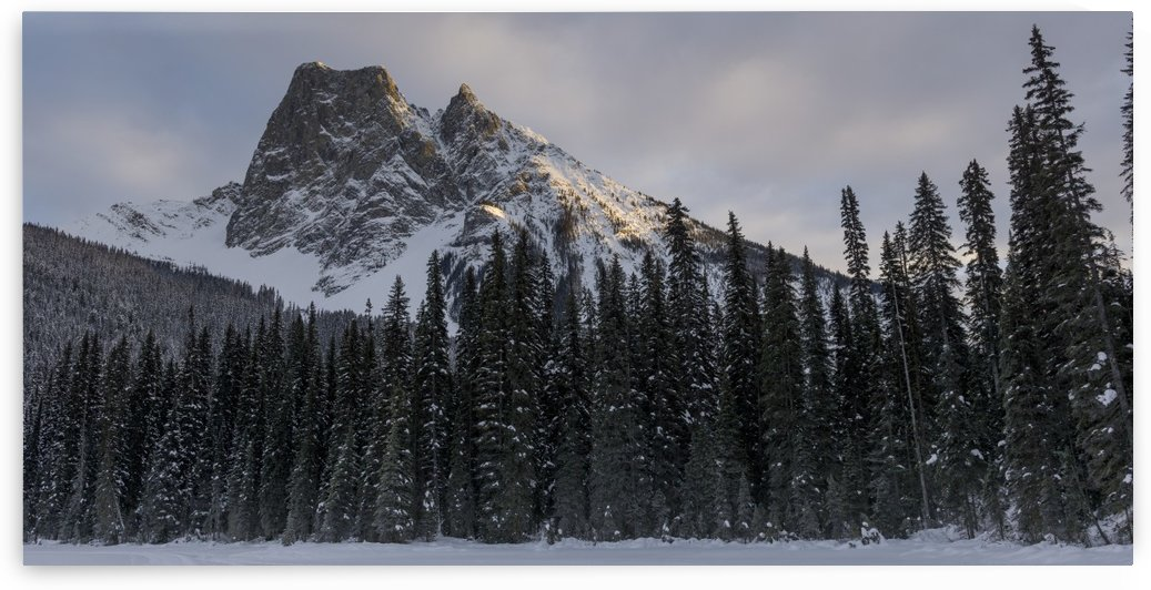 Frozen Emerald Lake in Yoho National Park; British Columbia, Canada by PacificStock