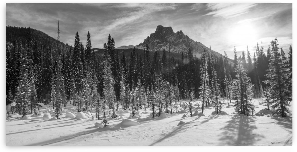 Snow on the rugged Canadian Rocky Mountains and a snow covered field, Yoho National Park; Field, British Columbia, Canada by PacificStock