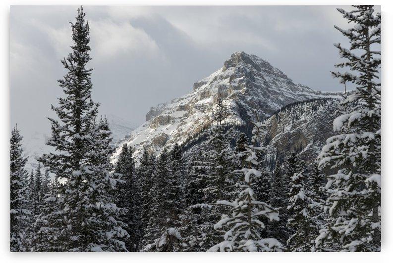 Rugged mountain peak with snow under a cloudy sky; Lake Louise, Alberta, Canada by PacificStock