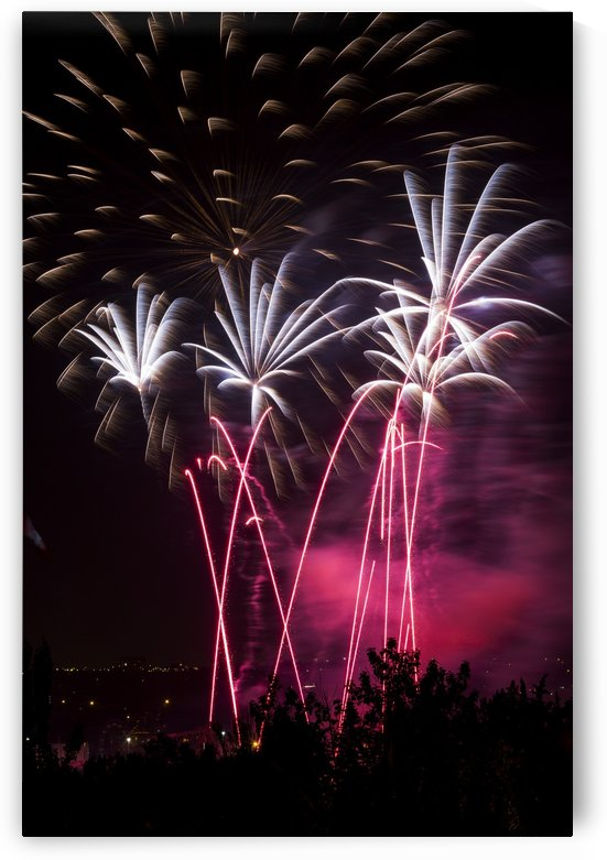 Colourful fireworks at nighttime; Calgary, Alberta, Canada by PacificStock