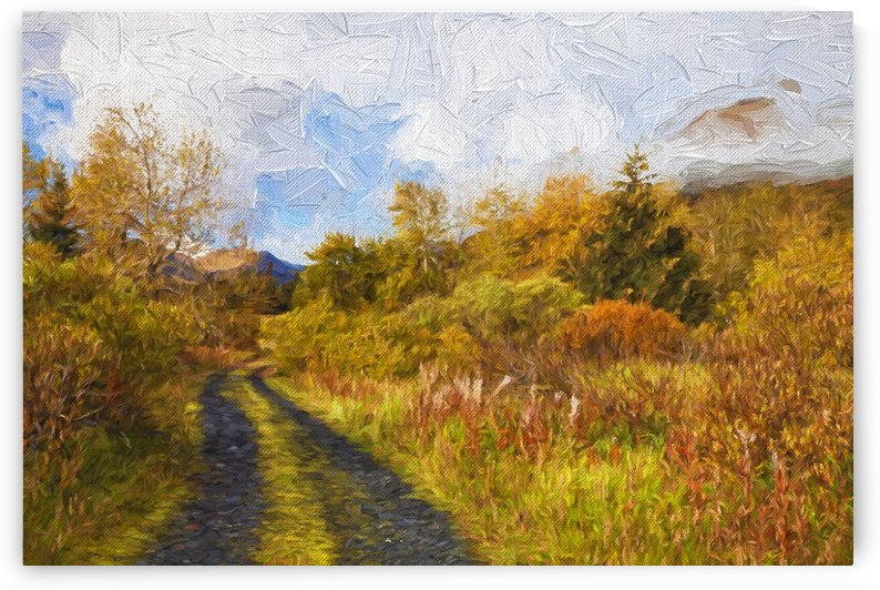 Autumn scenic oil painting along Chiniak Highway; Kodiak, Alaska, United States of America by PacificStock