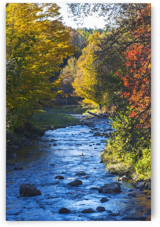 Small river with rocks in autumn; Ways Mills, Quebec, Canada by PacificStock
