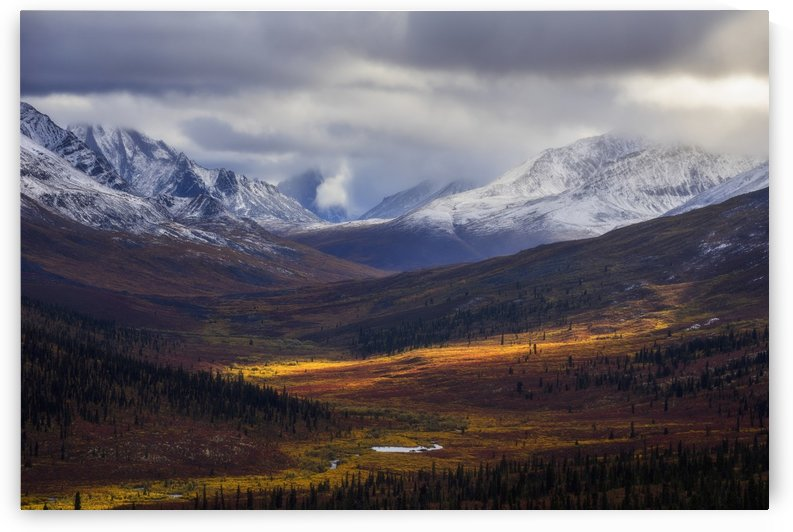 Storm clouds part allowing light to illuminate the landcape in the North Klondike Valley along the Dempster Highway in northern Yukon; Yukon, Canada by PacificStock