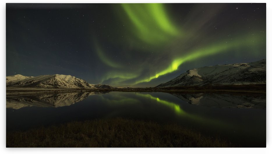 Northern Lights (aurora borealis) over the Dempster Highway and reflected into a pond; Yukon, Canada by PacificStock