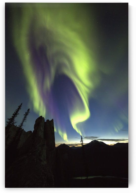 Northern Lights (aurora borealis); Yukon, Canada by PacificStock