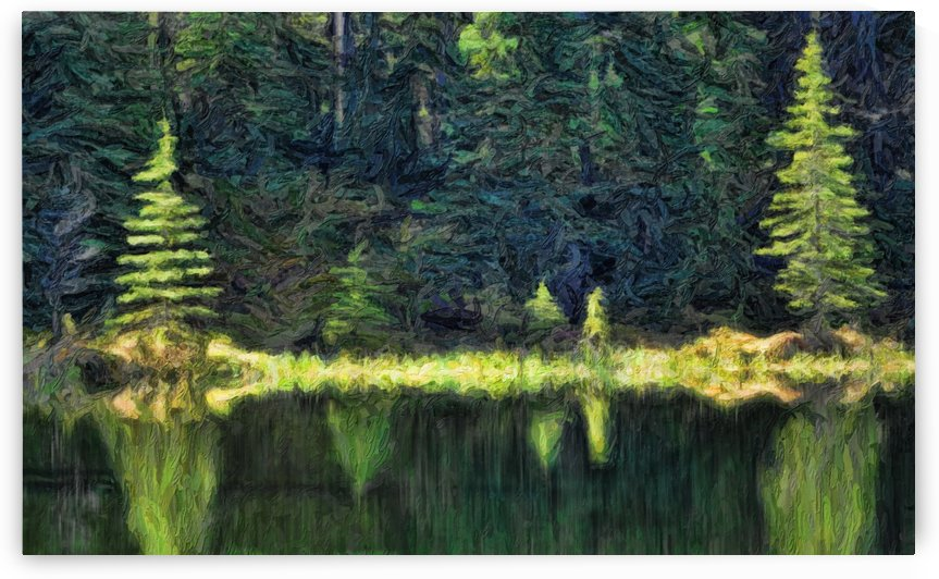 Abstract painterly style, reflection on water, Jasper National Park; Alberta, Canada by PacificStock