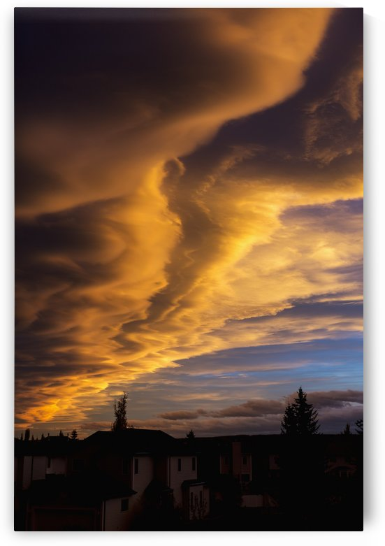 Dramatic colourful clouds at sunset with interesting formations and some blue sky with houses in a neighbourhood; Calgary, Alberta, Canada by PacificStock