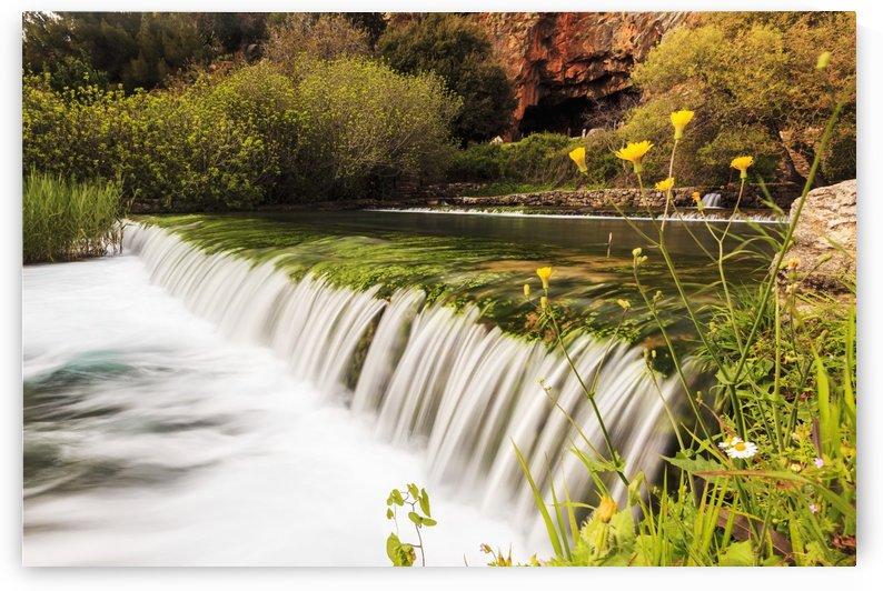 Herman River springs; Caesarea, Israel by PacificStock