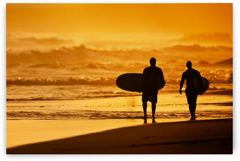 Silhouettes of Surfers on the Beach at Sunset by PacificStock
