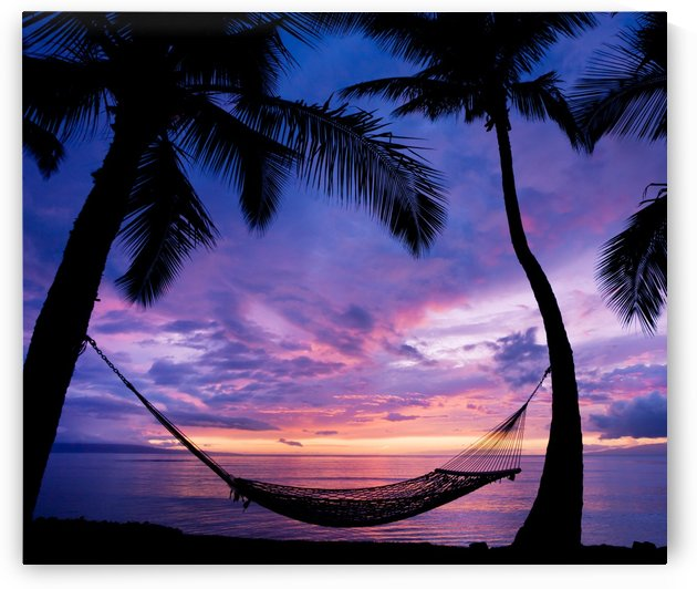Beautiful Vacation Sunset, Hammock Silhouette with Palm Trees by PacificStock