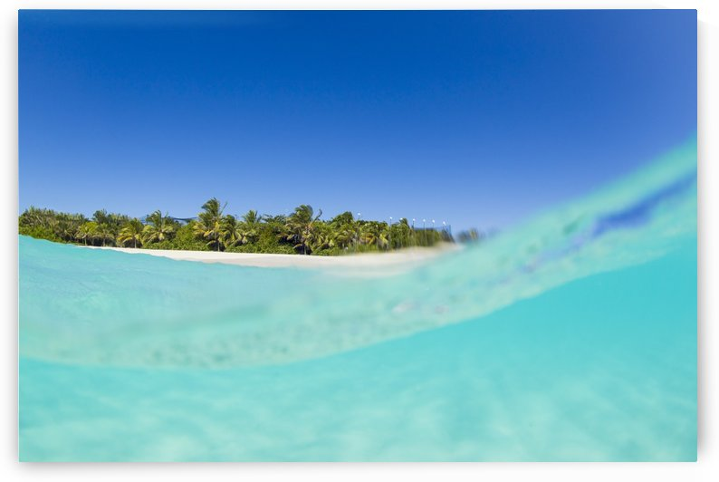Tropical Island, Blue Sky and Beautiful Ocean by PacificStock