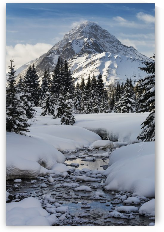 An open creek with snow covered curvy banks, filled with snow covered rocks and snow covered trees with snow covered mountain, blue sky and clouds in the background; Kananaskis Country, Alberta, Canada by PacificStock