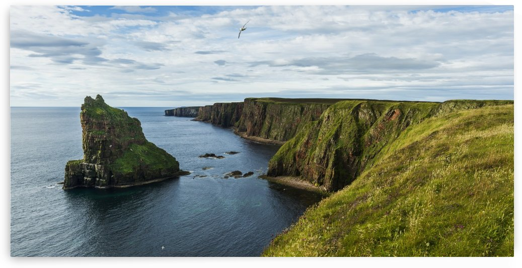 Stacks of Duncansby and the rugged coastline of Duncansby Head; Scotland by PacificStock