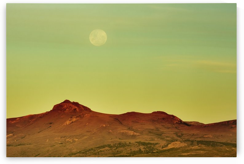 The moon is rising over a yellow desert landscape; Bariloche, Argentina by PacificStock