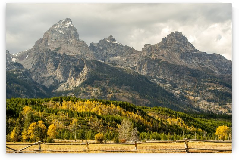 Grand Teton range in autumn, Grand Teton National Park; Wyoming, United States of America by PacificStock