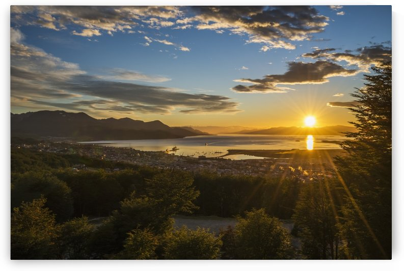 The sun rises over the port of Ushuaia in Argentina as a ship enters the calm bay, trees in the foreground and low hills on the horizon, while the sky is dotted with clouds and turns from a golden yellow to a deep blue; Ushuaia, Argentina by PacificStock