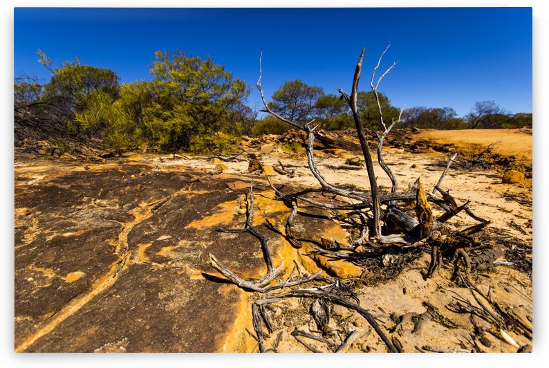 Kalbarri Canyon by Alex Heller