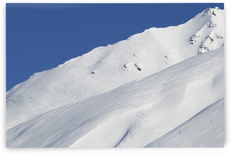 Lines carved by skiers and snowboarders who flock to Thompson Pass near Valdez to partake of the perfect powder; Alaska, United States of America by PacificStock