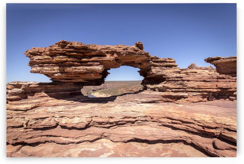 Natures Window by Alex Heller