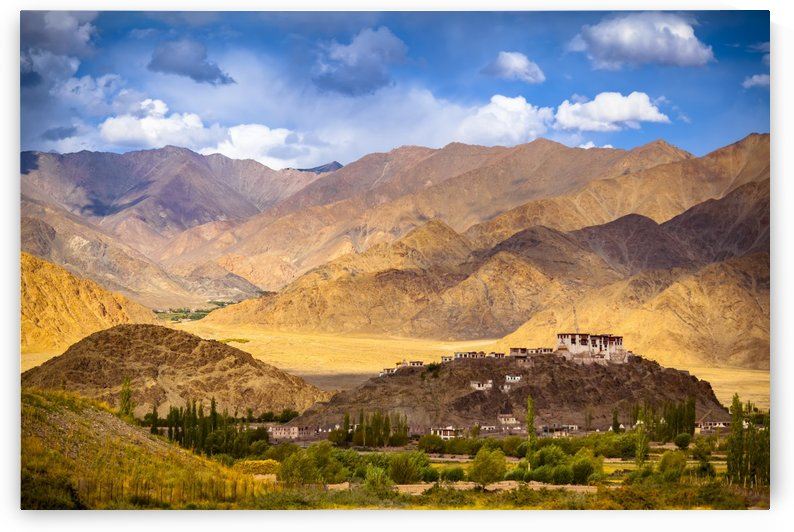 Stakna Monastery; Ladakh, India by PacificStock