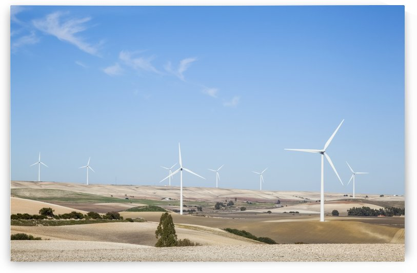 Wind turbines in fields with a blue sky; Andalusia, Spain by PacificStock