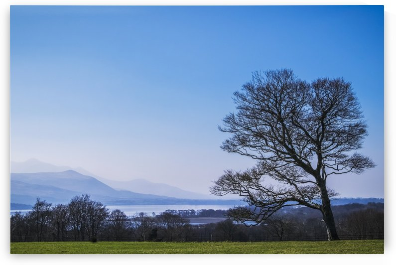 A vew of Lough Leane in Killarney National Park; County Kerry, Ireland by PacificStock