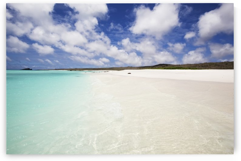 White sand beach with crystal clear turquoise water and blue sky by PacificStock