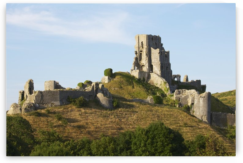 Ancient ruined castle perched on a verdant hill by PacificStock