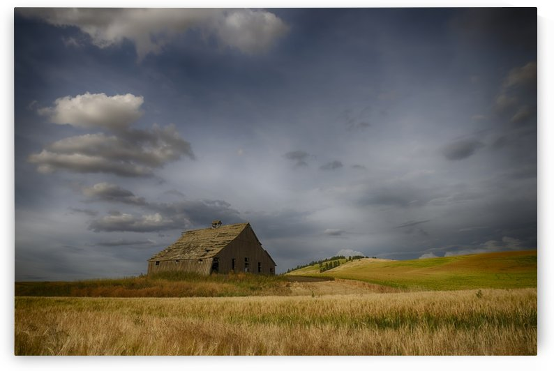 Old wooden barn in a wheat field under a cloudy sky; Palouse, Washington, United States of America by PacificStock
