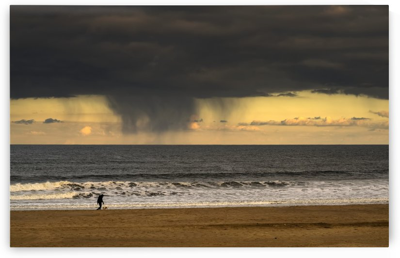 Silhouette of a person and dog walking on the beach at the water's edge under storm clouds with rain streaks and a sunset sky in the distance over the ocean; South Shields, Tyne and Wear, England by PacificStock