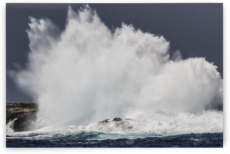 Swell induced wave crashing on the Kona coast; Kona, Island of Hawaii, Hawaii, United States of America by PacificStock