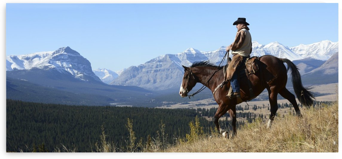 Cowboy riding with a view of the Rocky mountains, Ya-Ha-Tinda Ranch, Clearwater County; Alberta, Canada by PacificStock