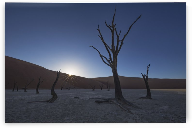 Sunrise over the Deadvlei, deep within Sossusvlei; Namibia by PacificStock