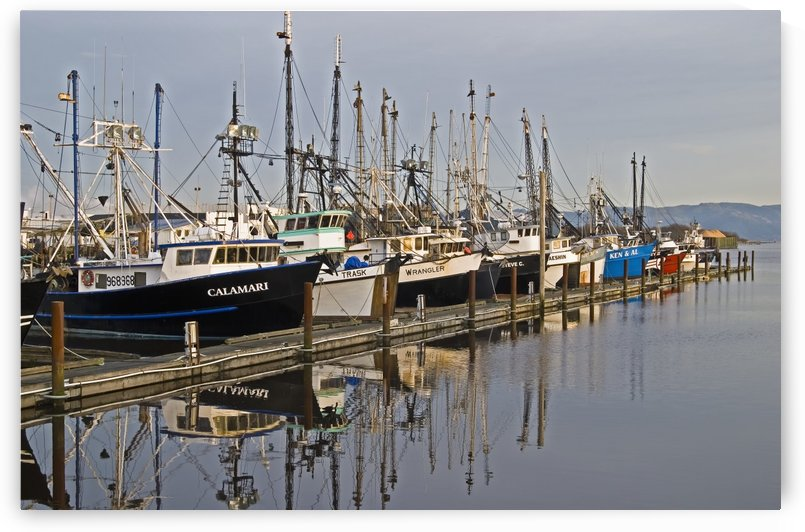 Commercial fishing boats dock in the Warrenton boat mooring basin on the Columbia River; Warrenton, Oregon, United States of America by PacificStock