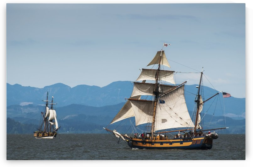 Tall ships sail on the Columbia River near Astoria; Oregon, United States of America by PacificStock