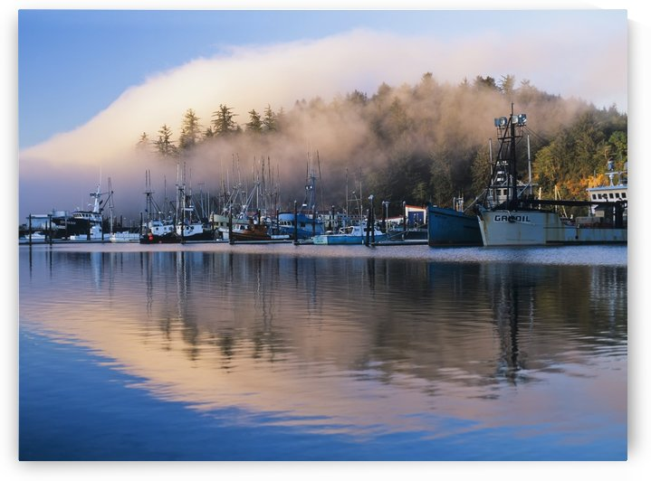 Boats dock at Winchester Bay; Oregon, United States of America by PacificStock