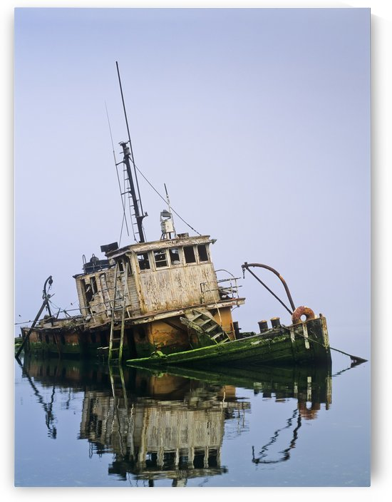 A derelict boat decays at Gold Beach; Oregon, United States of America by PacificStock