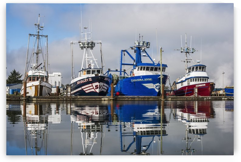 Fishing boats moored at the dock; Warrenton, Oregon, United States of America by PacificStock