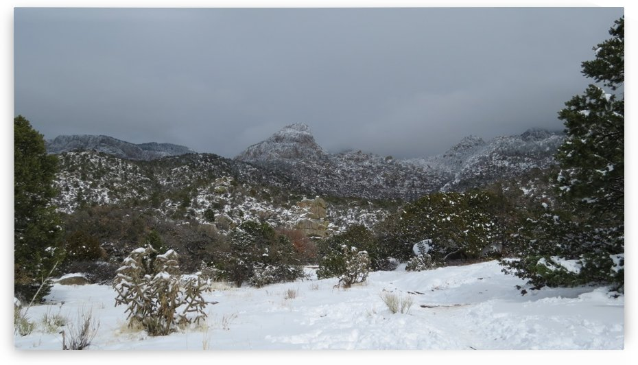 Sandia Mountains in the Snow 7 VP by Vicki Polin